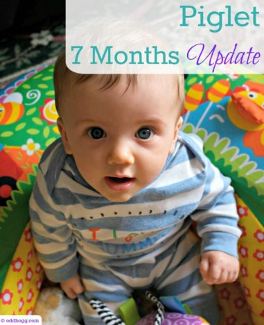 Piglet is 7 months old! What milestones has he hit in the last month, how is his size, feeding and sleep? How does you baby compare? https://oddhogg.com/piglet-7-months-update/