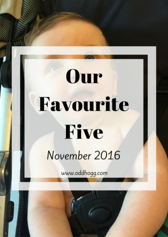 Our Favourite Five - November 2016 | A list of the five things we have loved this month htto://oddhogg.com