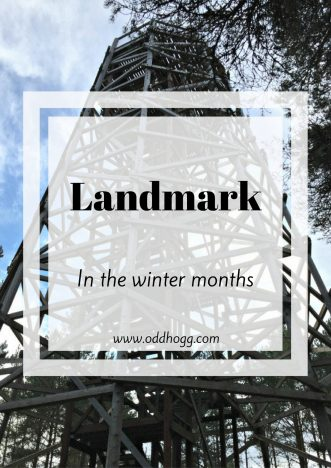 Landmark In The Winter Months | Have you ever wondered what a family day out at Landmark Forrest Adventure Park is like in the winter? We went along in November to see which of the attractions we could see. Click on the post to see what we got up to https://oddhogg.com