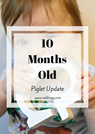 Piglet's 10 Month Update | My baby boy is 10 months, this update is all about his size, feeding, likes, dislikes and general development http://oddhogg.com