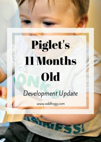 Piglet's 11 Months Update   So close to his first birthday, but not quite there yet. This mama is clinging on the the last of his babyhood for as long as she can! This month we talk about breastfeeding, weaning, growth, teething, hand foot and mouth and mobility. When will Piglet start walking? Have a read to find out if he's close! http://oddhogg.com