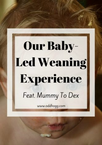 Baby-Led Weaning Experience Feat. Mummy To Dex | Nicola talks us through how she has been getting on with baby led weaning with her son. As a first time parent she didn't know what she was doing at first - but she has soon worked it out and is a total natural when it comes to making delicious recipes for her 8 month old http://oddhogg.com