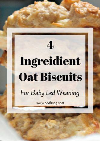4 Ingredient Oat Biscuits For Baby Led Weaning | I love these biscuits to give Piglet as a snack. They are perfect for BLW, or for older children to have for a snack. Quick and easy to make, suitable for freezing and with no nasties included these are great for the whole family https://oddhogg.com