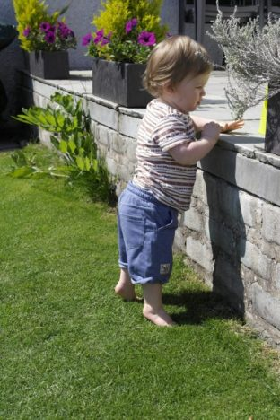 Piglet at 16 Months Old | Playing standing https://oddhogg.com