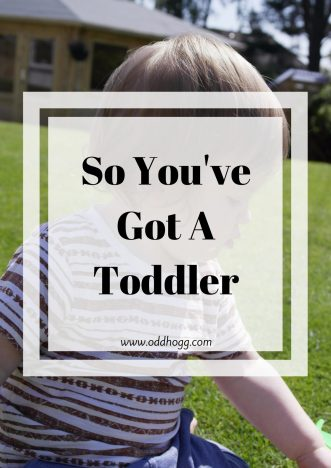 So you've Got A Toddler... | Our lives have completely changed since Piglet has become a toddler. As first time parents this change has been a bit of a shock and we're still working out how best to cope https://oddhogg.com