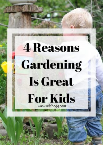 4 Reasons Why Gardening Is Good For Kids | A guest post highlighting the top reasons you should encourage your chilren to help you in the garden https://oddhogg.com