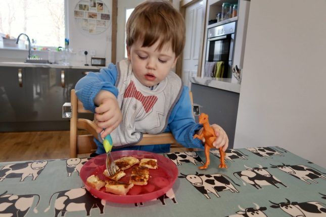 Safety 1st Wooden Highchair Review | Piglet in the high chair eating https://oddhogg.com