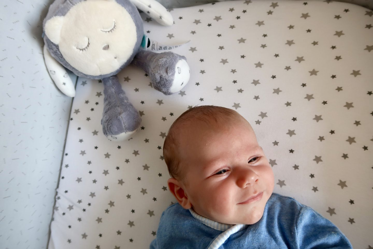 myHummy Snoozy Review
