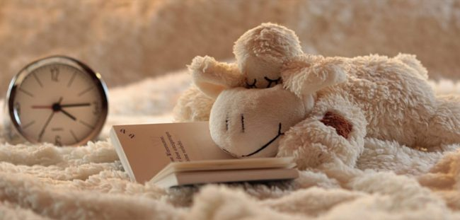 5 Ideas For Helping Your Toddler Get To Sleep | Stuffed animal on bed www.oddhogg.com