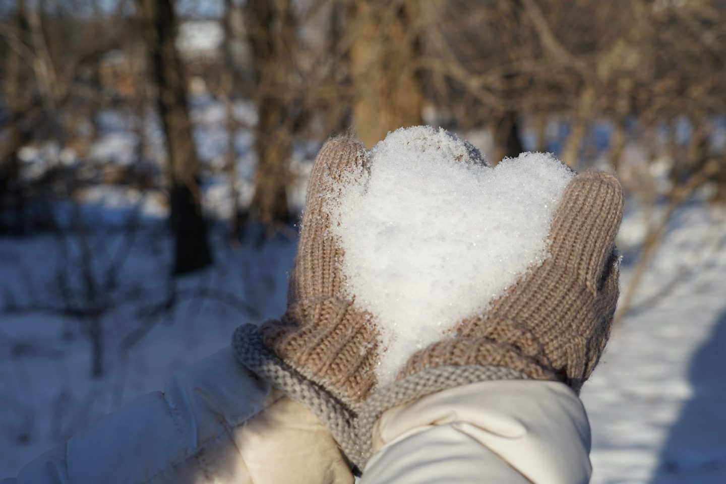 A pair of hands in brown gloves holding snow in the shape of a heart