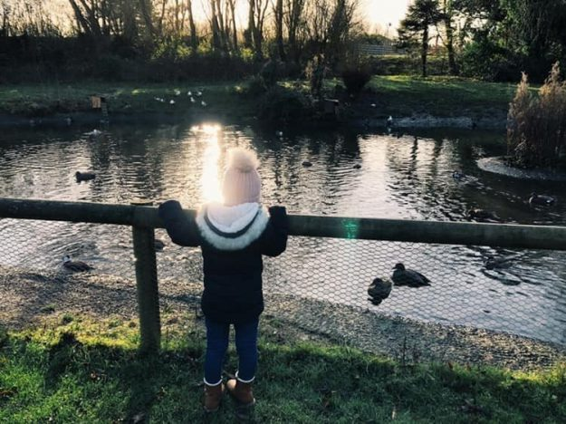 A little girl in a bobble hat is leaning on a fence to watch the ducks in a pond