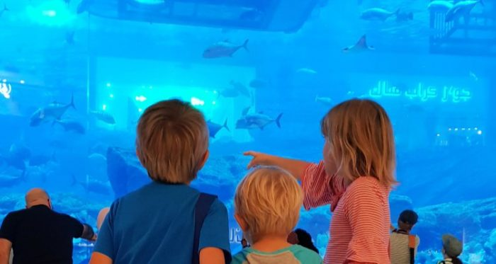 Three children face the aquarium inside Dubai Mall