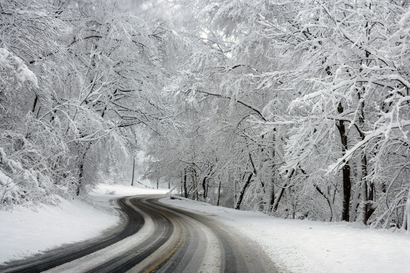A country road in the winter with snow covered trees and tyre tracks on the road