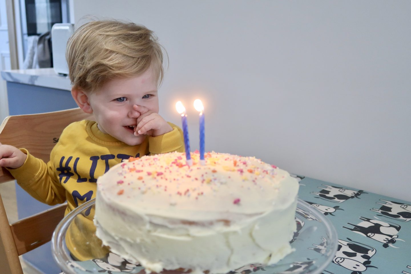 A boy smiling at a white birthday cake with sprinkles on and 2 candles
