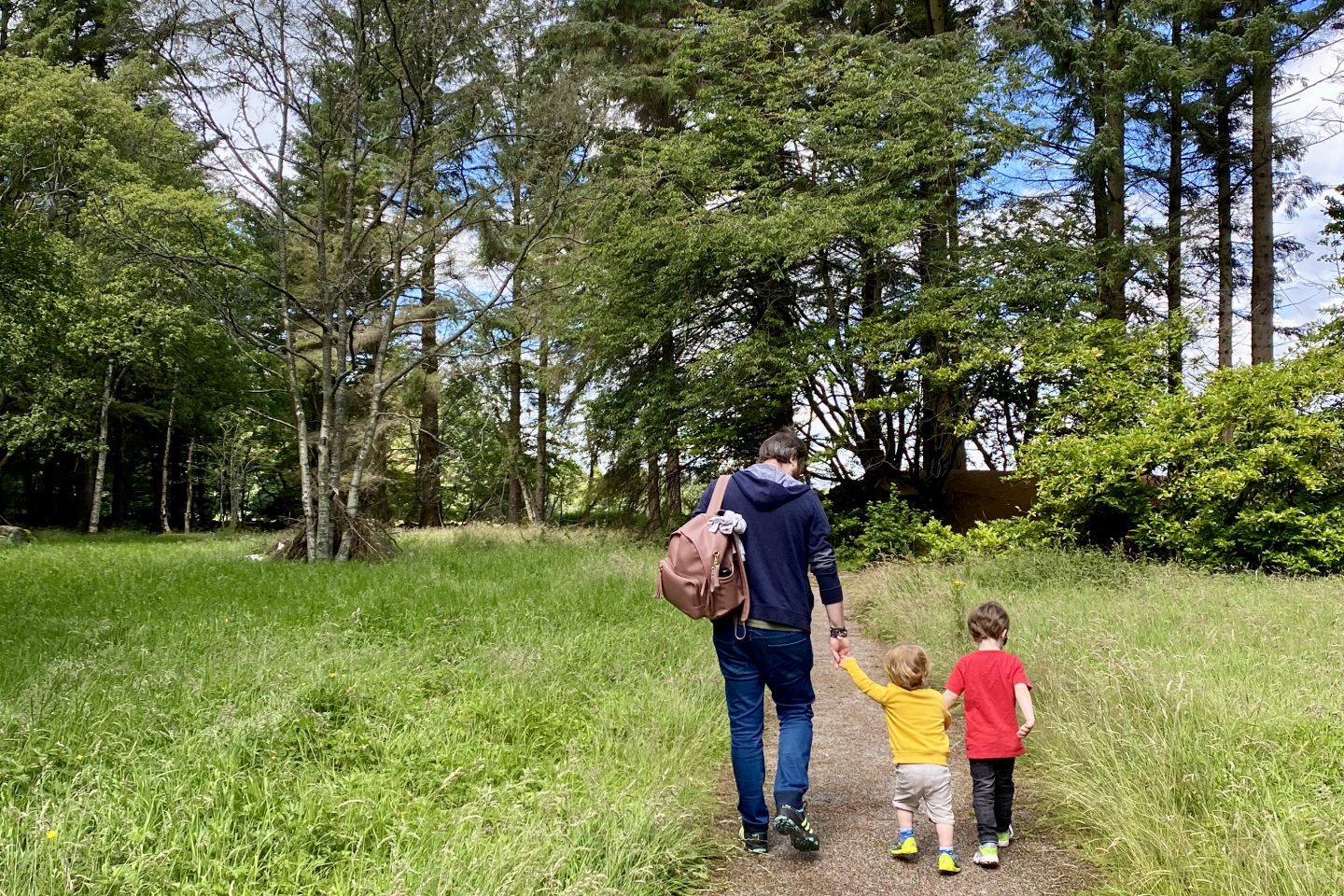 A man holding the hands of his 2 sons as they walk through the woods