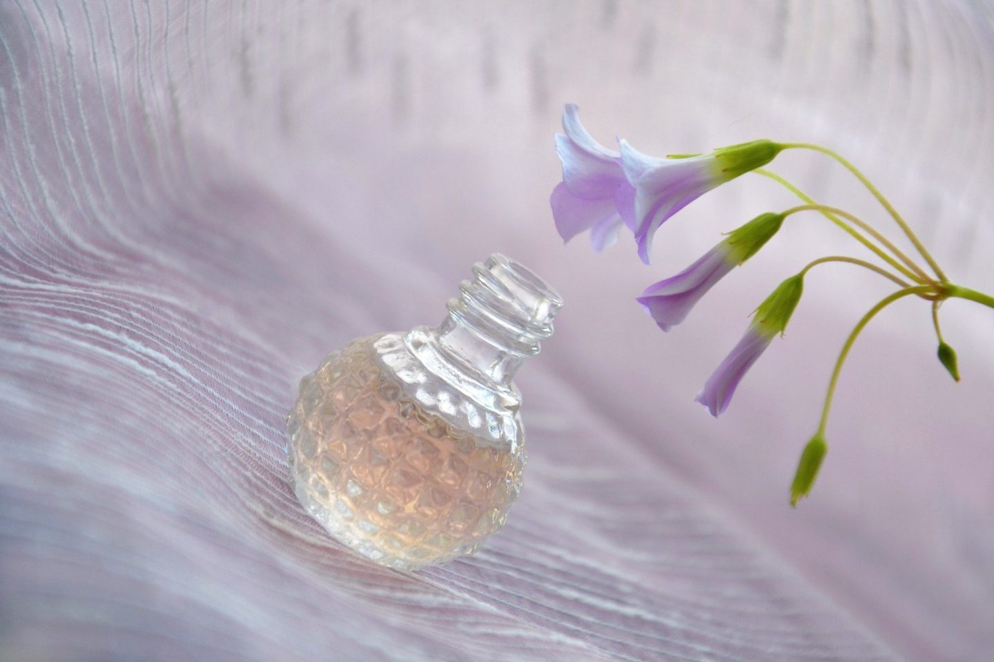 A bottle of perfume next to a flower