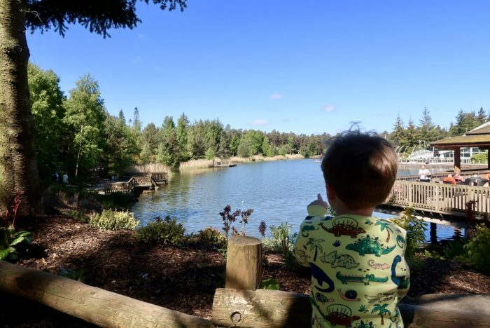 A boy pointing at a large lake